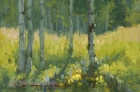 Summer Aspen Stand 4x6in (sold)