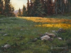 Last Light on the Divide 12x16 in (sold)