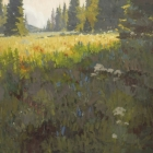 Alpine Garden 48